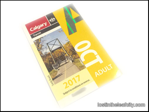 Low-Income Adult Calgary Bus Pass