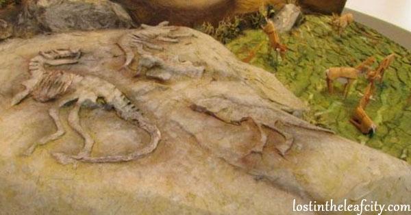 Canon Photo of Dinosaur Imprint