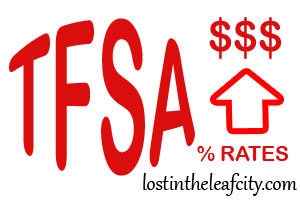 Max Out Your TFSA