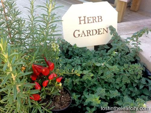 Herb Garden at Calgary Horticultural Society